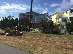20161016-00004.jpg (tristanloper) Tags: florida palmcoast a1a hurricanematthew palmcoastflorida palmcoastfl damage cleanup hurricane atlanticocean