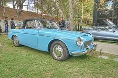1965 Datsun 1500 Roadster (dmentd) Tags: 1965 datsun 1500 roadster