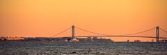 Verrazano Narrows Bridge (Sid's Corner) Tags: yellow sunset nyc new york newyork newyorkcity panorama cityscape city usa nikon nikond800 wtc waterfront bridge evening red orangesky schoksi schoksiphotography ngc verrazano verrazanonarrowsbridge nj newjersey northbergen portimperial
