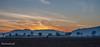 La route d'Epfig au couchant (Romain Guilhot) Tags: alsace canon novembre basrhin 1740mm froid hiver nature ried couchant soleil sunset