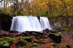 Waterfall  (linwujin) Tags: asia japan color colorfull colour water waterfall  maple tree yellow orange red fujifilm xt1 xf1655 green stone leaf