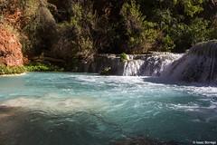True Blue (isaac.borrego) Tags: uploadedviaflickrqcom canyon light rock havasucreek supai havasupai grandcanyon arizona canonrebelt4i water waterfall falls stream creek desert unitedstates america waterfalls usa