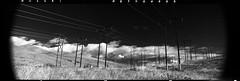 Rollei Retro 400S (Film-Love) Tags: 16bitgrayscale 2016 201611 31aspectratio 68°f60min 6x17 analogcamera analogimages bw bwnegativefilm bwchemistry bwfilmchemistry bwnegativescan bwscan bw091 bwksmcpolmrcnano blackwhite darkroom darkroomequipment epsonv750 epsonv750pro expiredfilm film filmchemistry filmformats filmprocessing filters fujicenterfiltergx617105mmnd2x fujiebcfujinonsw105mmf8 fujigx617 fujifilm fujinon105mmf8 gx617panorama goldnblue homedevelopfilm kodakhc110dilution1100 kodakhc110developer kodakkodafixsolution kodakchemicals kodakindicatorstopbath lenses manualfocuslenses mediumformat pano panorama panoramicphotography patersonsupersystem4 photographicchemistry photography photos polarizerfilter primelenses scanner scans schneideroptics singhray years f8lens normalprimelenses standdevelopment unknownexpdate