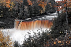 tahquamenon falls / happy halloween (twurdemann) Tags: autumn creative ephemeral fall2016 fallcolor fallcolour foliage forest fujixt1 halloween hiawathanationalforest landscape leaves longexposure lucecounty michigan michiganstatepark nature northernmichigan october scenery selectivecolour statepark tahquamenonfalls tahquamenonriver tannin trees unitedstates upperpeninsula viveza water waterfall