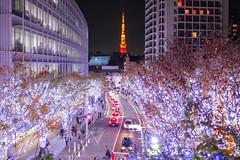 Illumination of Roppongi Keyakizaka (sapphire_rouge) Tags:       roppongi skyscraper roppongihills japan darkness illumination   keyakizaka tokyotower