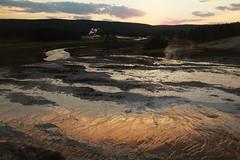 Upper Basin Sunset (RPahre) Tags: yellowstone uppergeyserbasin upperbasin yellowstonenationalpark wyoming sunset