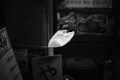 White plastic bag (Laser Kola) Tags: blackandwhitephotography blackandwhite bw dark plastic bag whitebag floating gliding flying osaka streetphotography monochrome kuro shiro japan decisive moment laserkola lasseerkola canoneos5d canon5dmarkii 50mm canonef50mmf14usm f14 prime lens floaty surreal outdoor night nightphotography