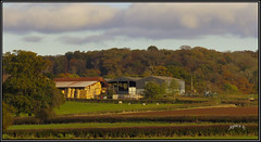 Autumn Farmyard. (Picture post.) Tags: landscape nature green autumn farmyard buildings barn hayrolls woods trees cattle fields afternoon sunlight hedges ploughed clouds sky