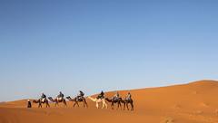 IMG_6248 (Israel Filipe) Tags: marrocos