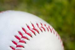 stitched [eXplored - 21.11.2016] (Cocodix) Tags: mondays cocodix efs60mm macro macromondays baseball white ball gras outdoor canon cocolino stiched monday