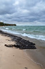 40 Mile Point shipwreck (michiganseagrant) Tags: michiganseagrant sustainablesmallharbors smallharbors michiganseagrantextensioneducators rogerscity lakehuron charrettes charrette marina tourism discoverus23 harbors
