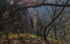 Rock landscape (KF-Photo) Tags: felsformationen felsvorsprung gegenlicht rock traifelberg schwbischealb swabianalb