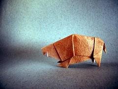 African Boar - Kyu-seok Oh (aka Jassu) (Rui.Roda) Tags: origami papiroflexia papierfalten sanglier jabal javali african boar kyuseok oh jassu