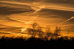 Sonnenuntergang... (olgi49) Tags: gx7 sonnenuntergang sunset sundown teufelsmoor
