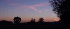 Panorama Limburgs landschap (Frank Berbers) Tags: landschap landschaft landscape paysage nederland sunrise zonsopkomst sonnenaufgang leverdusoleil limburgslandschap limburg middenlimburg sky blauestunde bluehour heurebleue blauweuurtje nikoncoolpixs9500 montfort