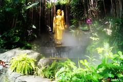 Wat Saket, Bangkok (Ld\/) Tags: thailande thailand thai wat saket gold mountain bangkok boudhisme bouddha mood