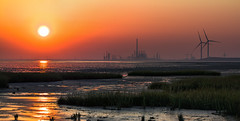 oxid (gnseblmchen) Tags: hdr dri highdynimcrange dynamicrangeincrease sonnenuntergang sunset abendrot sun sonne windkraft windkraftanlage windpowerplant windmillpoweredplant windrad windwheel panorama watt mutflad mudflat mud schlamm facotries factory fabikanlage fabrik chemie chemistry industrie industry chemurgy schilf reed waterreed nature natur meer wasser sea water shore reflections reflektion spiegelung shape umriss wallpaper background wind windendige plant free hintergrund cc creativecommons