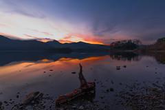 Serene (joe_bolton) Tags: nikond750 nikon serene calm water evening log stillness