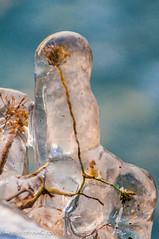 erikharstrom-autumn  2010-0102 (Erik Harstrm) Tags: france glace 2010 dcembre hautesavoie tougues