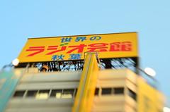 akihabara - tokyo (meeeeeeeeeel) Tags: street city trip travel blue red urban building tourism sign yellow japan lensbaby tokyo blurry nikon asia outdoor dusk billboard akihabara electrictown d5100