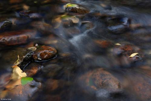 Photo - Lefthand Creek at Buckingham Park