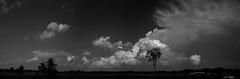 Brewing Storm (CalTek Design) Tags: summer sky ontario storm weather clouds july lightning peterborough thunder