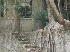 003 (maruisi77) Tags: nature ruins olympus   amamioshima
