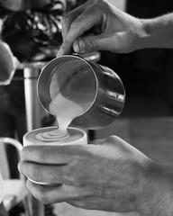 LA_biscucuy_latte-6 (arepa182) Tags: coffee café venezuela origin portuguesa biscucuy chabasquén torrefacción