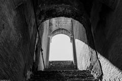 Colosseum I. (Csaba Csorba) Tags: bw rome tower castle dark nikon shadows sigma colosseum d7100