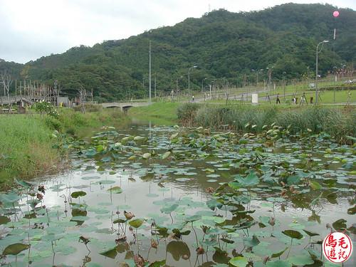 山水綠生態公園 (62).jpg