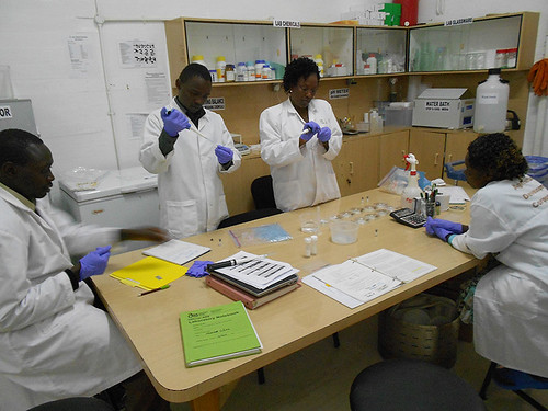 Virus testing in Molo ADC lab