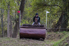 20131116_0969 (SNAKY34) Tags: trois coeur alfred canet cic herault equitation brumm fontaines cheveaux cherval 2013 internationaux troisfontaines lepouget snaky34