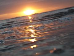 Zomer aan de Zee (2) (chbeckmann) Tags: sea nature 1x1 tpof