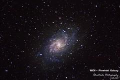 M101 - The Pinwheel Galaxy (StarDude Astronomy) Tags: camping light tree beautiful canon dark photography star joshua space ngc tent astro telescope andromeda galaxy nebula astrophotography m45 m31 orion m42 stunning astronomy triangulum pinwheel dust universe horsehead breathtaking pleiades m83 stargazing m82 m46 2438 bodes stellarvue 60d astrometrydotnet:status=solved sv102ed astrometrydotnet:id=nova163711