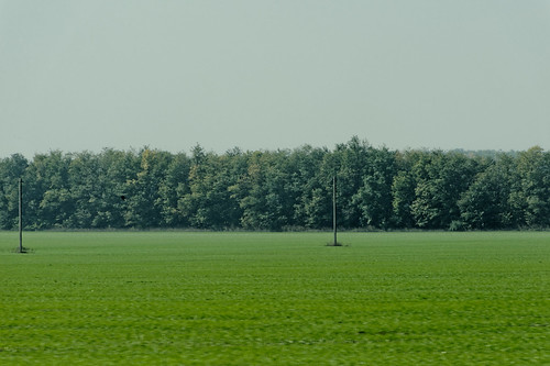 Taganrog Green Farm
