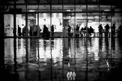 Riflessioni () Tags: bw white black water reflections photography photo holga foto photographer photos fotografia riflessi bianco nero stefano fotografo trucco zush stefanotrucco