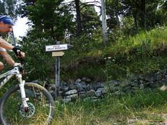 salendo al colle della bassetta (musin TO) (davide595) Tags: mountainbike piemonte mtb biker sentiero musin ruote