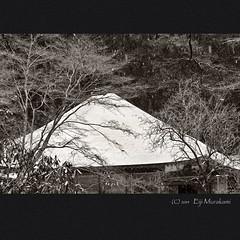 室生寺 金堂 (Eiji Murakami) Tags: winter japan sigma 日本 nara 冬 merrill foveon 奈良 dp3 室生寺 フォビオン