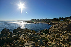 Pacific Grove (Steve Holsonback) Tags: monterey pacific grove sony alpha peninsula asilomar a77