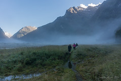 Wet track, Siberia Valley (NettyA) Tags: newzealand mist mountains fog nz southisland otago hikers tramping mtaspiringnationalpark 2014 trampers wilkinyoung otagonz siberiavalley siberiastream siberiariver youngwilkintrack sonynex6 youngwilkin