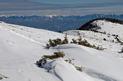 White world (Yoshia-Y) Tags: snow japansouthalps
