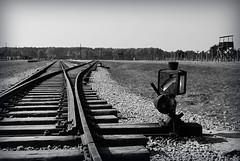 Railway (najjaricherif) Tags: blackandwhite blancoynegro poland polska railway polen rails blancoynegroblackandwhite nikond40x voiesferres