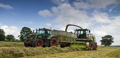 The Brighter Side (YT Brewer) Tags: blue sky tractor green field grass rain dark grey shropshire 828 newport jaguar heavy silage harvester deerpark forage forager hau fendt claas sward 940 chetwynd ytbrewerhau harperadamsuni