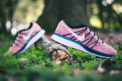 Nike Flyknit Trainer - Multicolor (Niwreig) Tags: fashion photography shoe shoes florida sony style running sneakers nike mc sneaker runners 24mm runner multicolor trainer niketalk nex sneakerhead solecollector photography sonynex nex6 flyknit