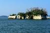 Rocky Islet (H.H. Mahal Alysheba) Tags: island matsushima landscape rock sea water japan nikon d800 afs nikkor 85mmf18