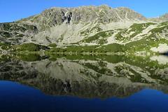 P1200325 (lajos.hanyecz) Tags: retezat nationalparks