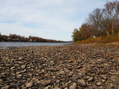 Rocky Shore of the Delaware (pilechko) Tags: delawareriver shore rocky lambertville nj newhope trees color cloudy