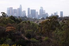 Downtown LA (2)  2016 ( Slices of Light   ) Tags: downtown urban skyline cityscape city angels point elysian park los angeles losangeles la   cityofangels california   californie  kalifornien tatsunis  america  estados unidos olympus ep5