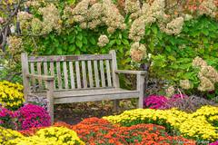 Park Bench-2016-2.jpg (scorpio71gr) Tags: colors frederickmeijergardens k3 parkbench pentax tamron7020028