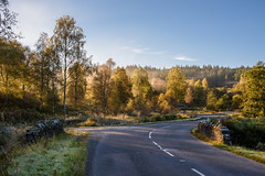 Dukes Pass (Sarah-86) Tags: nikond810 landscape scotland autumn mist trossachs highland trees woodland